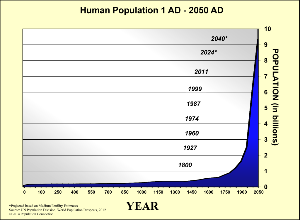 human population over time